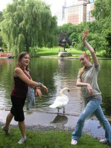 Queen Odette and her Swans at Boston Commons