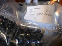 espelon, or black eyed peas, is one of Mario Espinoza's ingredients from Merida